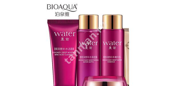 Water (хризантема)